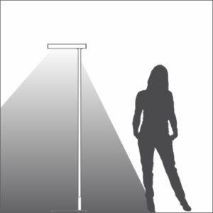 Kenzo single light distribution