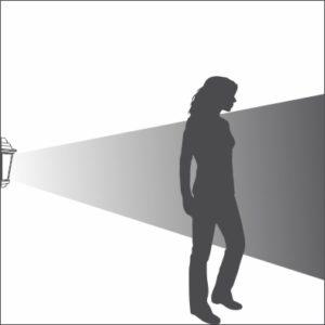 Edgecombe bulkhead light distribution