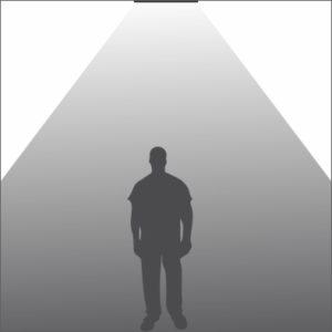Signa Pro light distribution